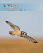 Birdpix Calendar