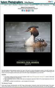 NPS 1st Place Avian