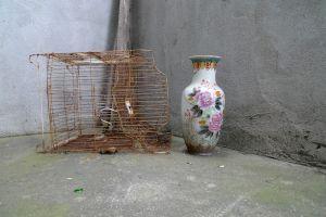 An abandoned Vase