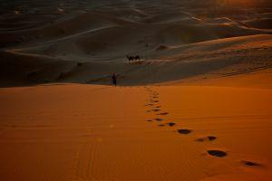 Erg Chebbi Sand Dunes (Morocco, 2011)