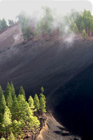 Lava Valley (GC, Spain 2009)