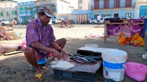Salting Fish