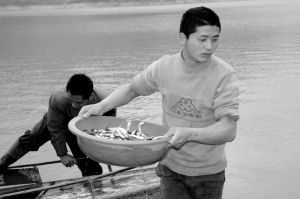 Catch of the Day (China, 2008)