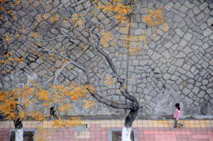Walking along a Wall in Xiamen (China, 2008)