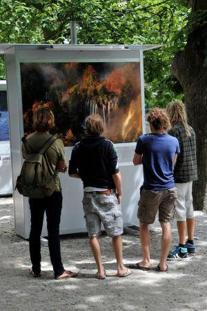 Wild Wonders Exhibition (Netherlands, 2010)