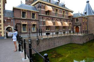 Political Tourism (Netherlands, 2010)