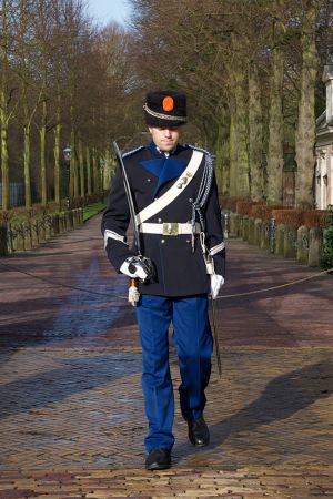 Palace Guards (Netherlands, 2013)