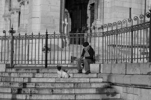 A Man and his Dog (Paris, 2012)